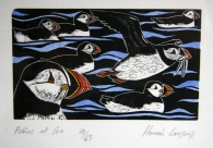 Puffins at sea - Hannah Lawson
