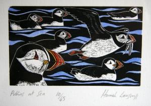 Puffins at sea - Hannah Lawson