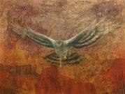 Untitled - Pam Crofts