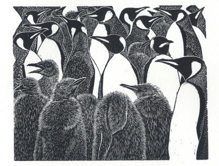 King Penguins - wood engraving
