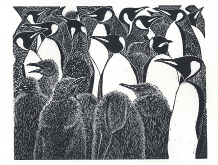 King Penguins - wood engraving